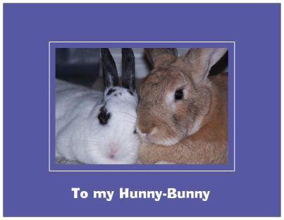 hunny bunny 25
