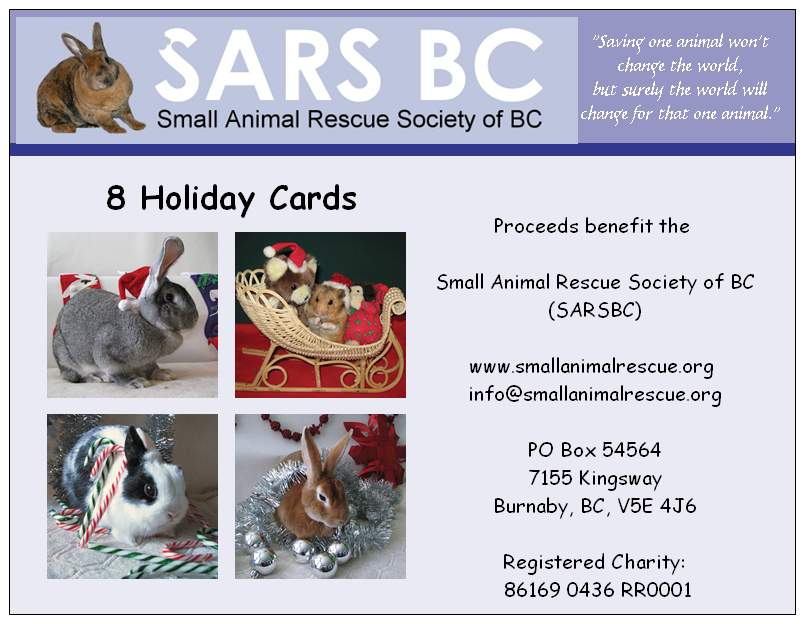 Christmas cards | Small Animal Rescue Society